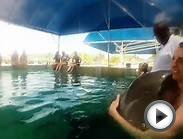 A Norwegian Sky Vacation | Bahamas Cruise | 2014 | Gopro
