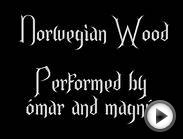 Norwegian wood (With lyrics) cover